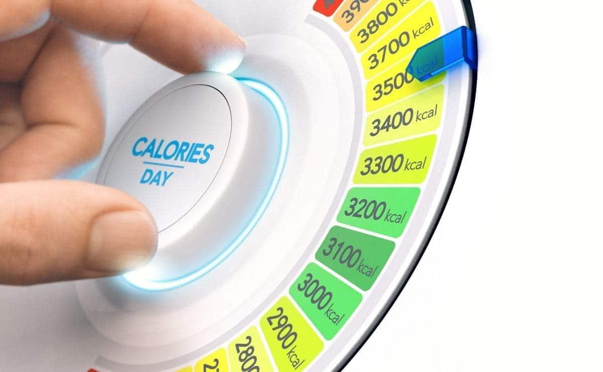 Dietas hipercalóricas