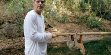 Frank Cuesta con un colugo en Tailandia