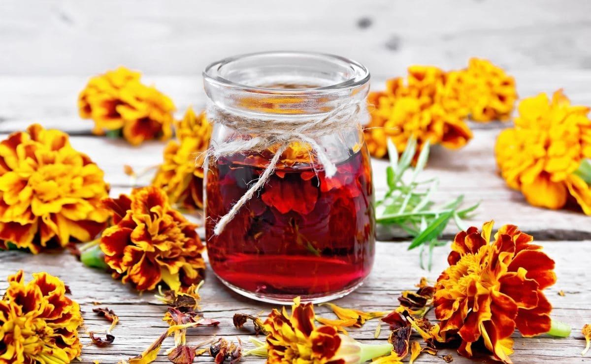 infusión antioxidante Mercadona