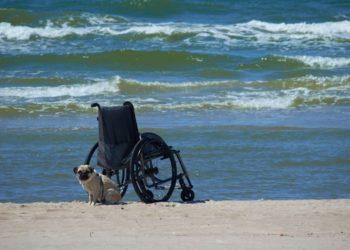 silla de ruedas playa vacaciones discapacidad COCEMFE