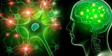 trastorno neurológico neurología