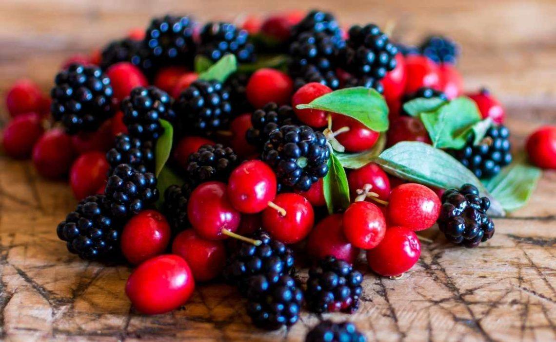 Frutas del bosque saludables para incluir en nuestra dieta