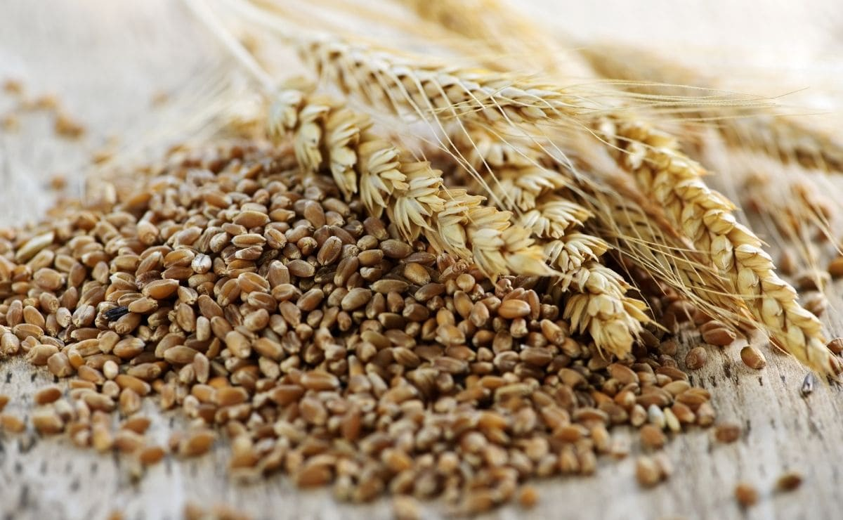superalimento cereales integrales