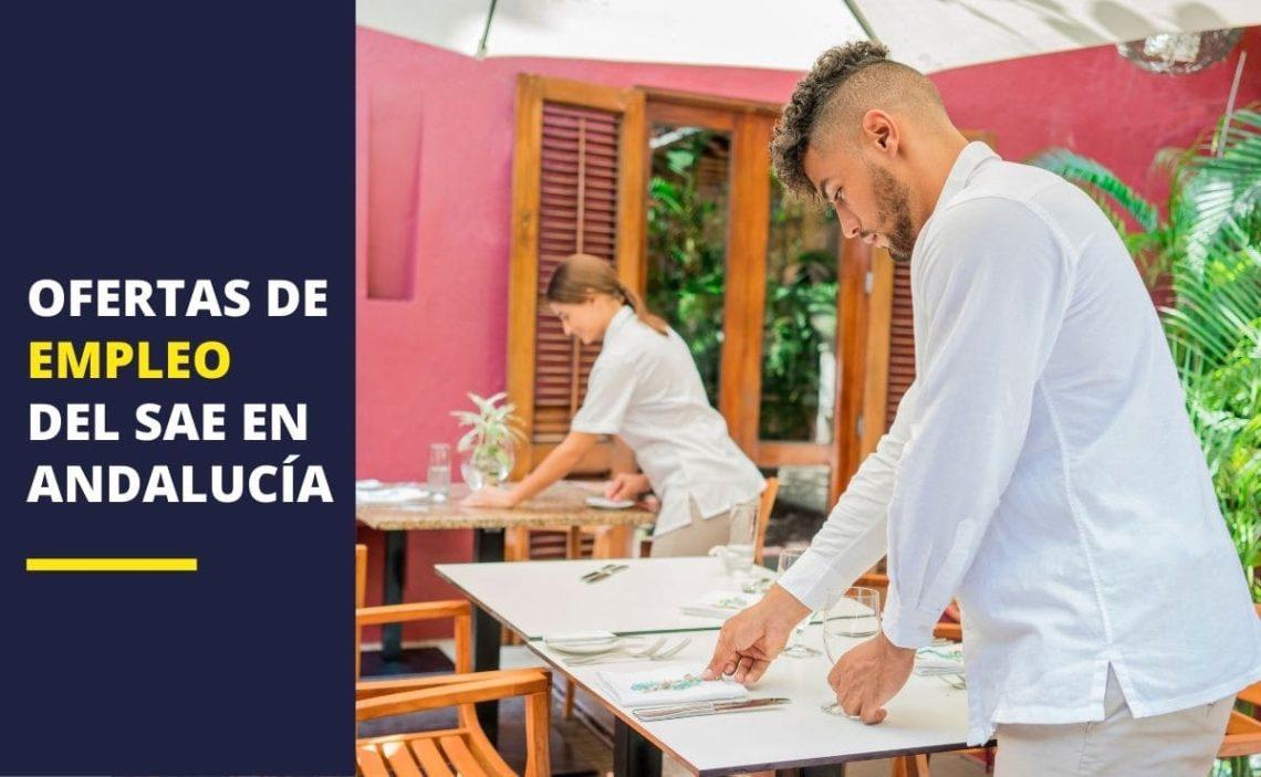 Empleo Andalucía SAE