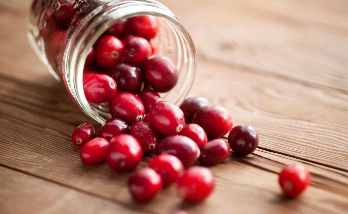 Arándano rojo Fruta del bosque