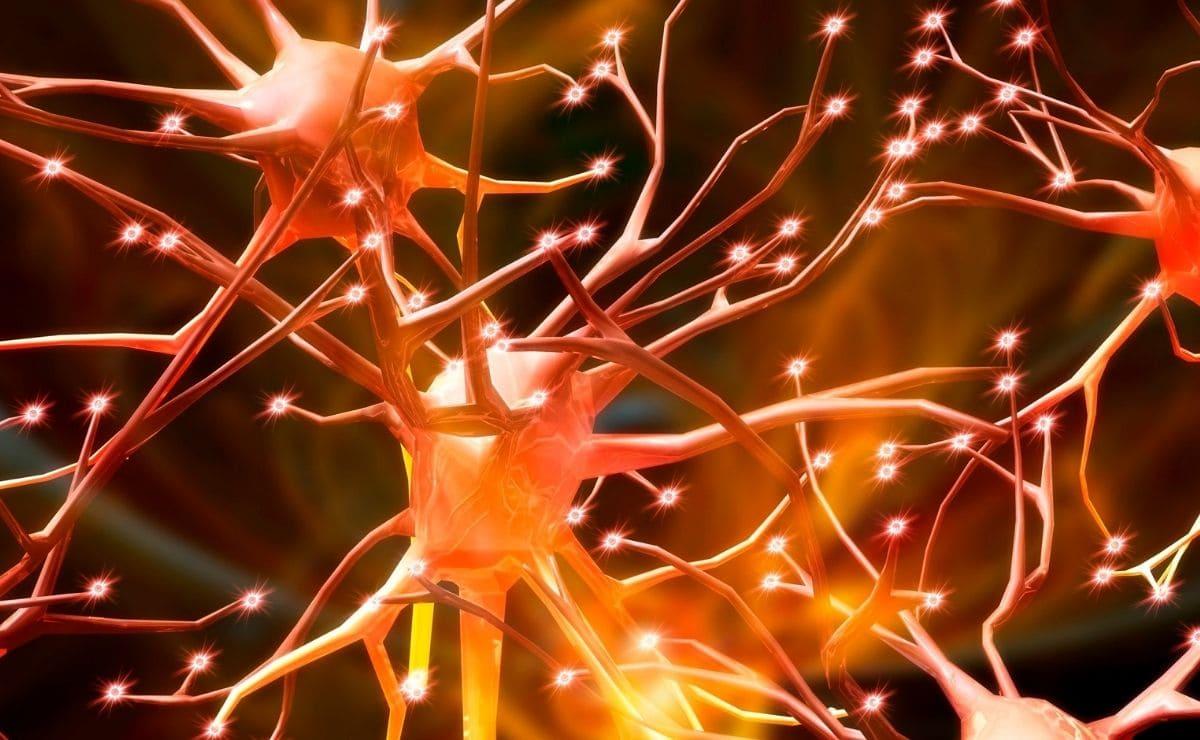 neurología ataxia