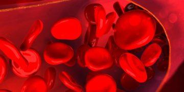 Glóbulos rojos vitamina B12