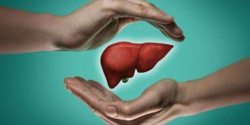 alimentos mantener salud hígado