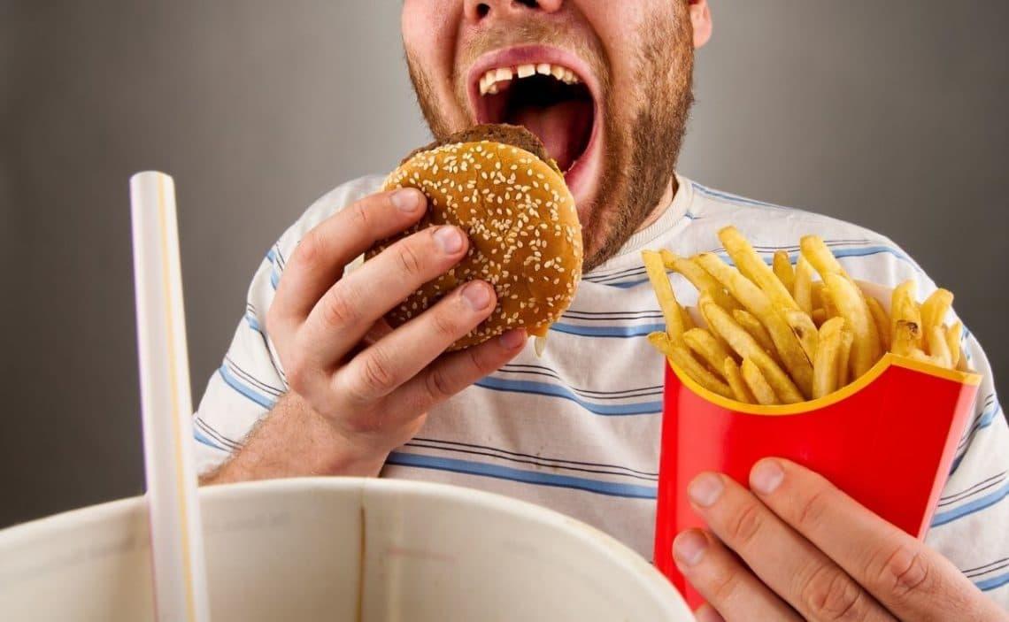comer hamburguesa cerebro comida ultraprocesada rapida cerebro