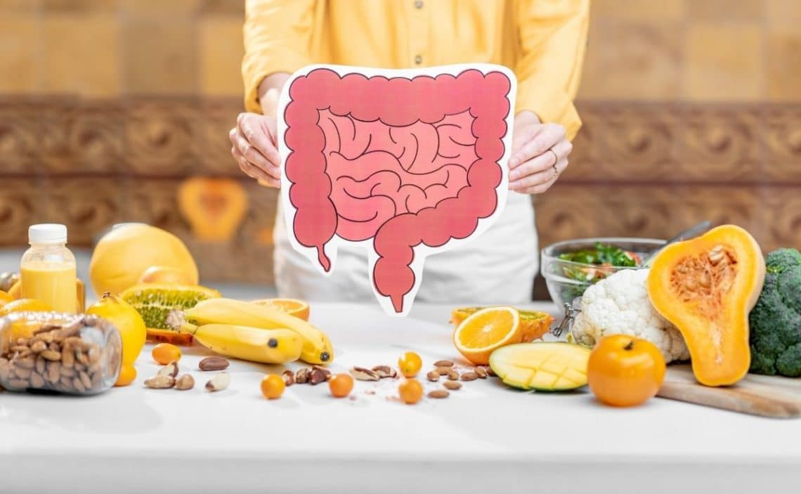 probióticos alimentos