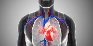 vitamina B12 insuficiencia cardíaca