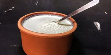 yogur estomago flora intestinal