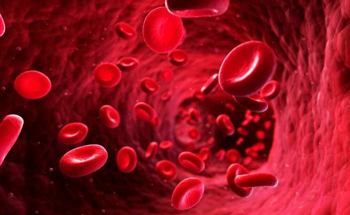 Contraindicaciones de tener niveles de hierro alto para la salud