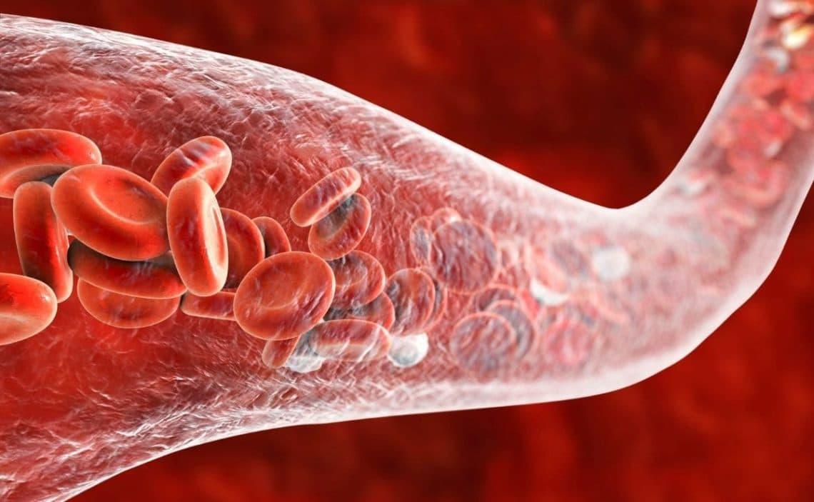 Circulación sanguínea superalimento