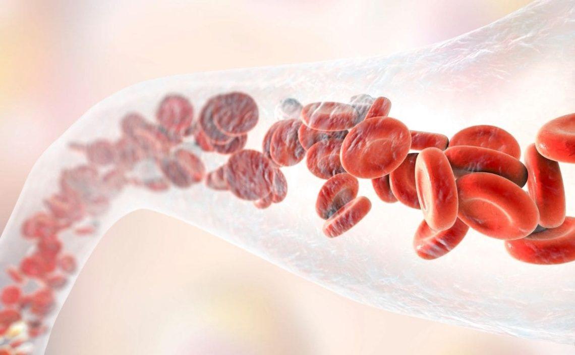superalimento germen de trigo circulación sanguínea