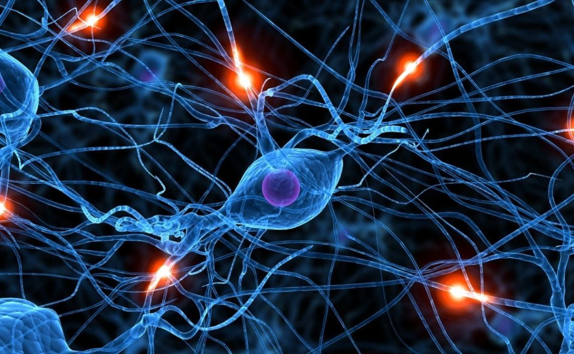 demencia vejez alzheimer avances tratar enfermedad