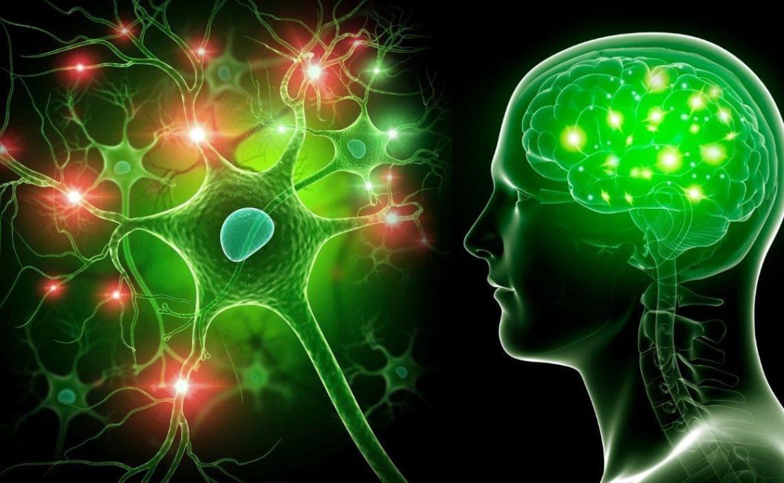 manzanilla aliviar sistema nervioso