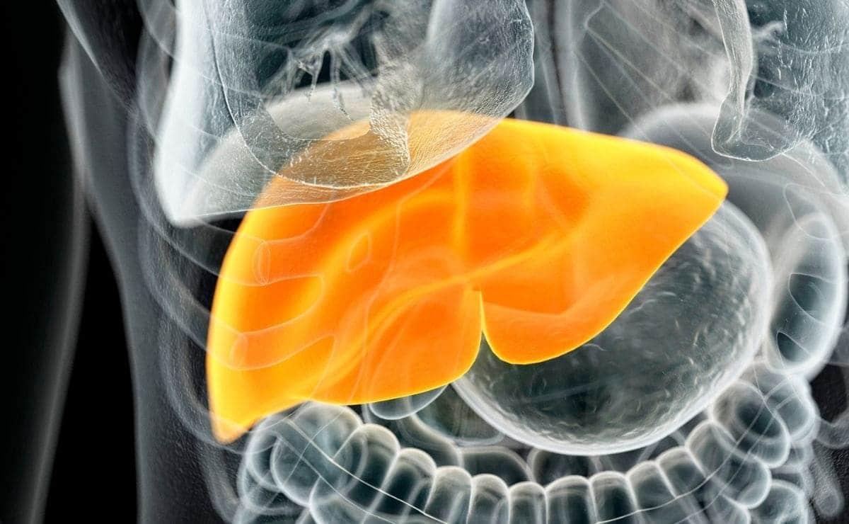perjudica consumo fructosa salud hígado
