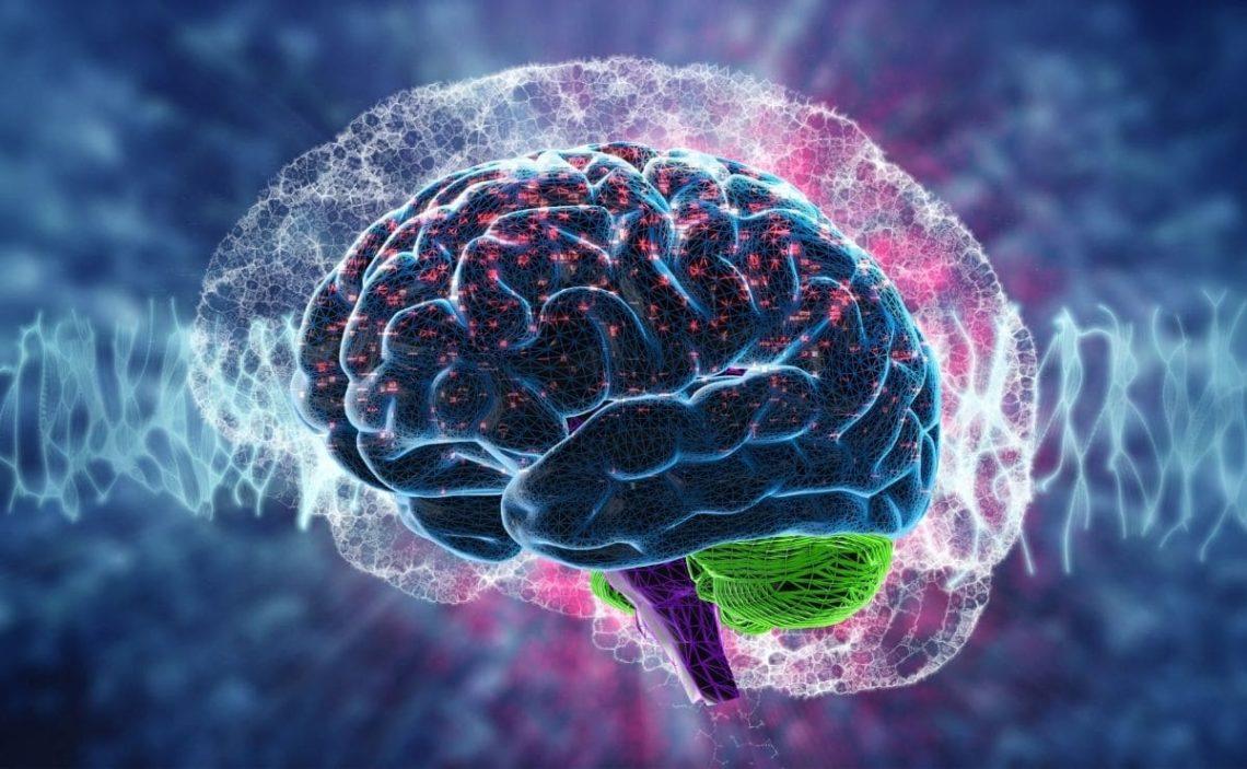 salud cerebral vitamina D