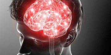 Bilirrubina protección cerebro