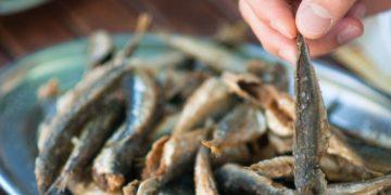 Boquerones calcio pescado
