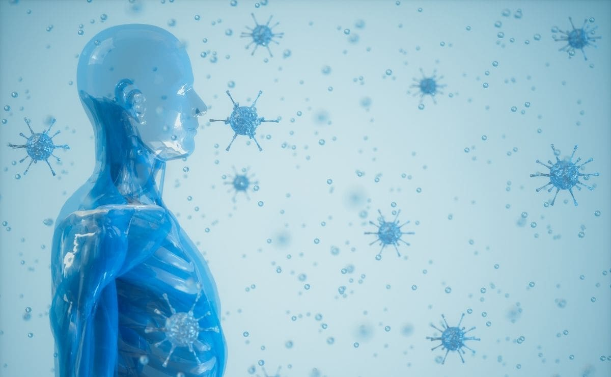 diferentes tipos de sistema inmune