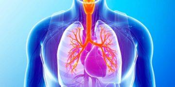 Estas son las razones por las que el dióxido de carbono es malo para la salud