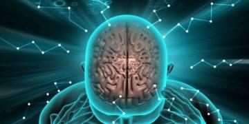 enfermedades neurologicas cerebro discapacidad